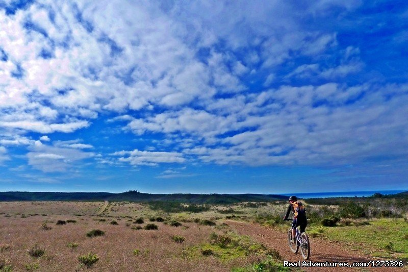 Cycle To The Cape | Image #21/21 | Portugal Wild Coast 7D