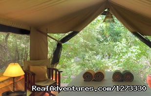 Tented Camp - 3 Days   Tsavo   West/mombasa    With  A Pop Up Ro