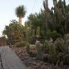 Spend Winter In The Sun At Oleander Acres Resort