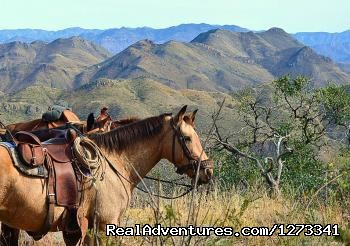 Rancho Los Banos Adventure Guest Ranch Los Banos, Mexico Horseback Riding