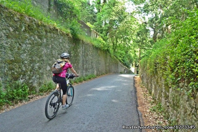 Cycling Sintra Hills (#3 of 5) - Sintra Cycling - Day Tour