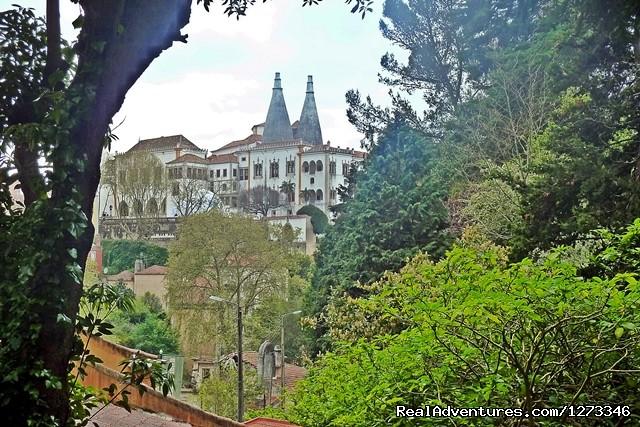 Sintra (#3 of 6) - Sintra Mountain Bike - Day Tour