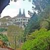 Sintra Mountain Bike - Day Tour