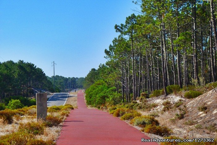 Cycle line | Image #4/17 | Atlantic West Coast & Sintra Road 7D