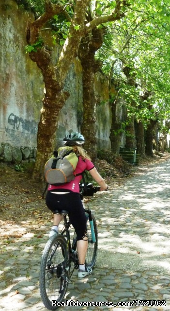 Sintra roads - Atlantic West Coast  & Sintra Cycling (road)