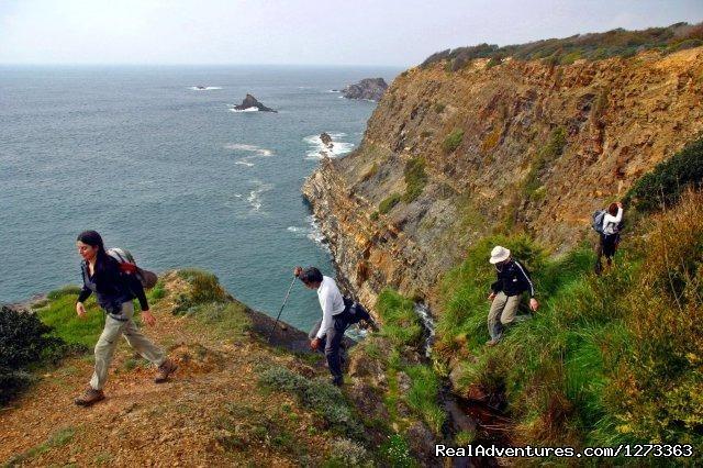 Amazing scenary (#6 of 21) - Wild Alentejo Coast Hike