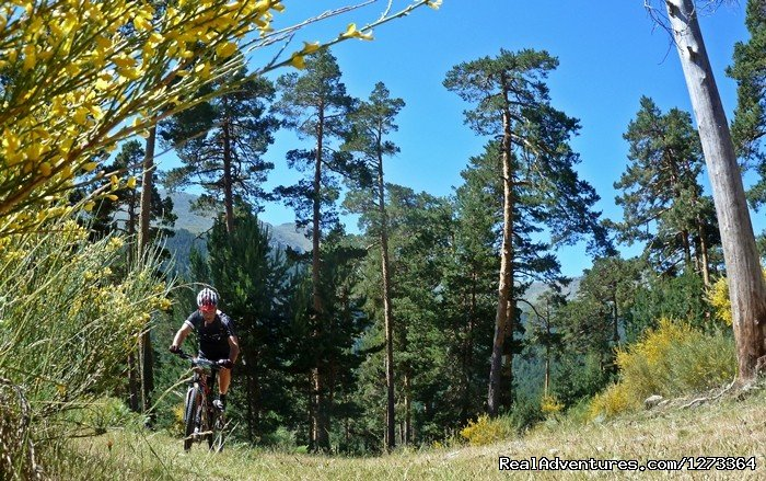 Epic MTBike trough Iberian Mountains and Forests | Image #10/17 | Madrid-Lisbon MTBike
