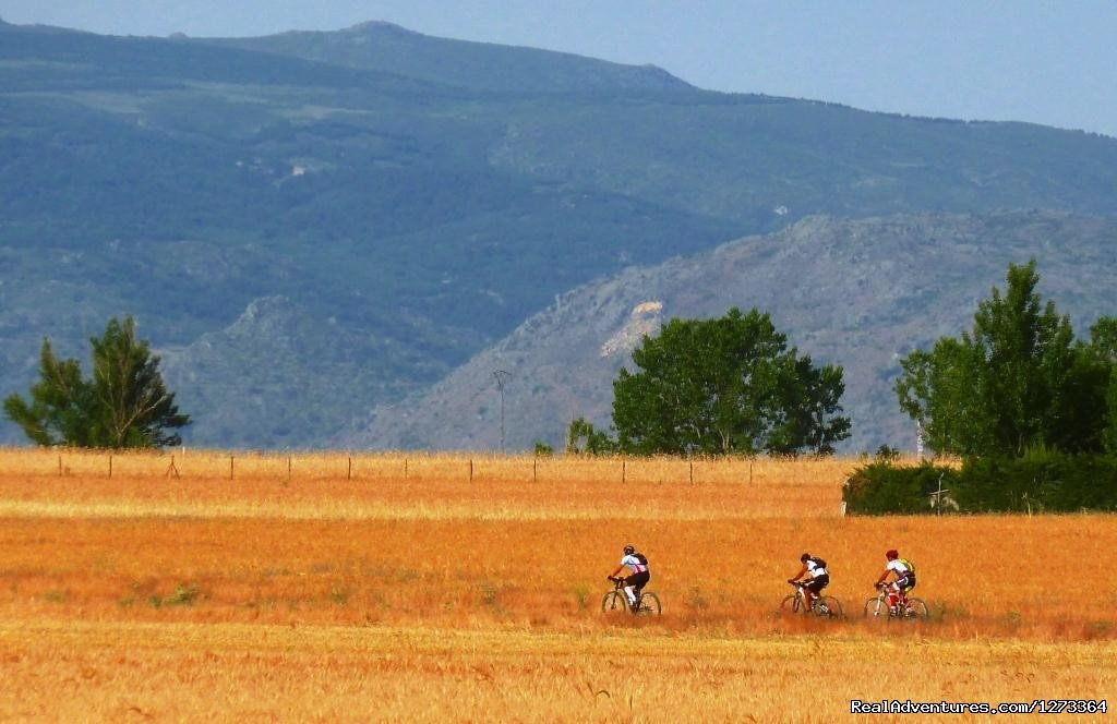 Riding golden fields in Spain | Image #11/17 | Madrid-Lisbon MTBike