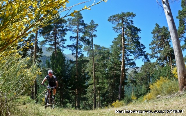 Epic MTBike trough Iberian Mountains and Forests - Madrid-Lisbon MTBike