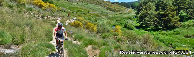 Single tracks in Gredos Mountains (#12 of 19) - Madrid-Lisbon MTBike