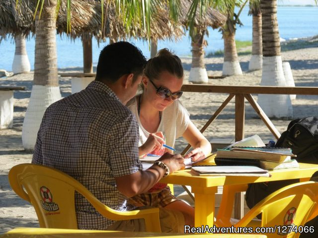 Spanish lessons at a beach resort once a weel - Spanish Language School and Volunteer in Honduras