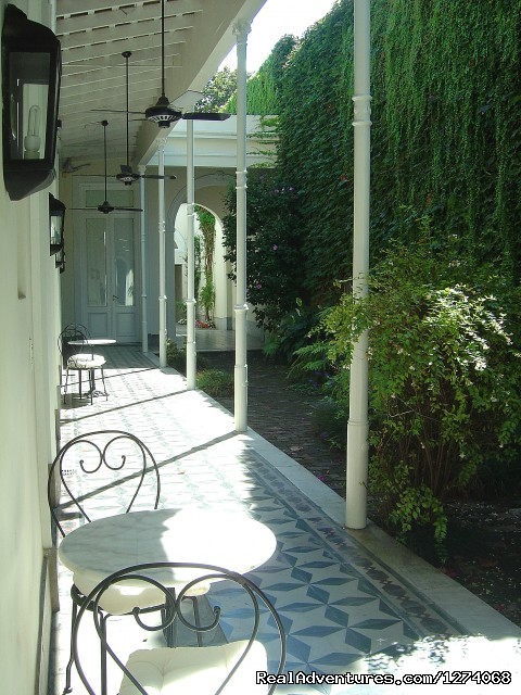 Great gallery of the beautiful garden - Charming Home Buenos Aires
