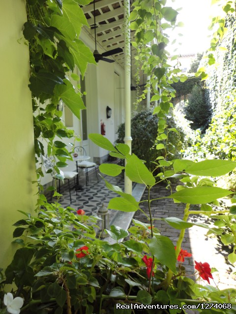 Lovely Garden (#23 of 26) - Charming Home Buenos Aires