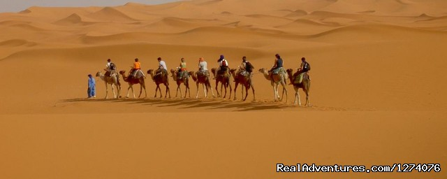 Camel Trek - Erg Chebbi Adventures