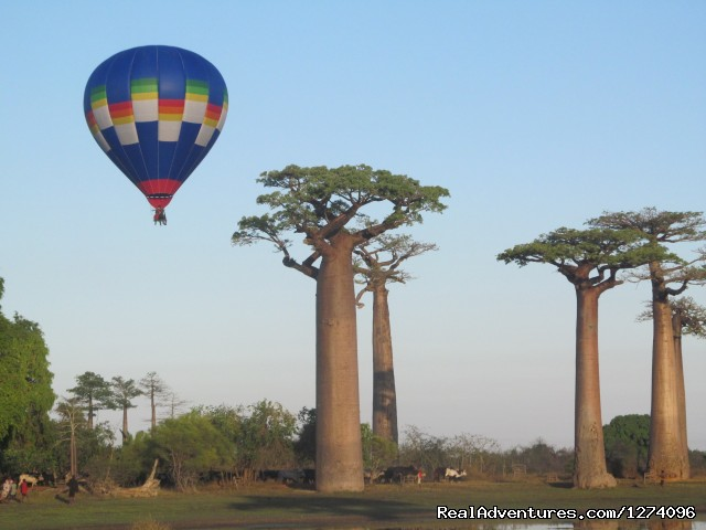 Imax filming at the Avenue of the Baobabs - Chez Maggie Hotel Morondava Madagascar