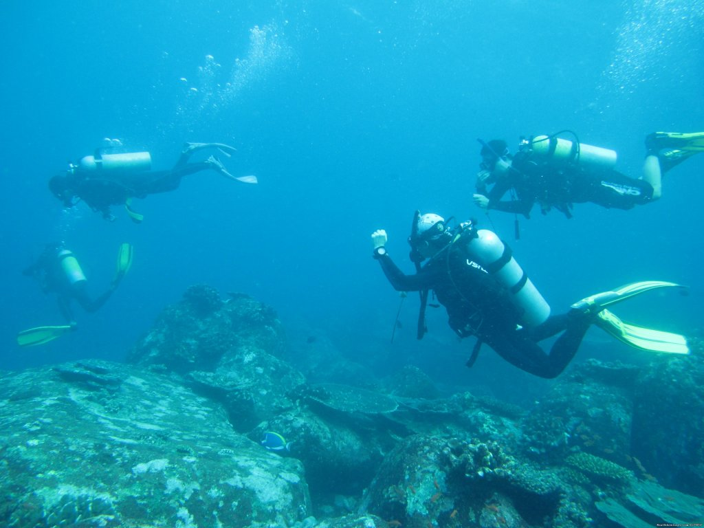 Dive group | Image #1/4 | Banda Aceh, Indonesia | Scuba & Snorkeling | Pulau Weh Dive Packages