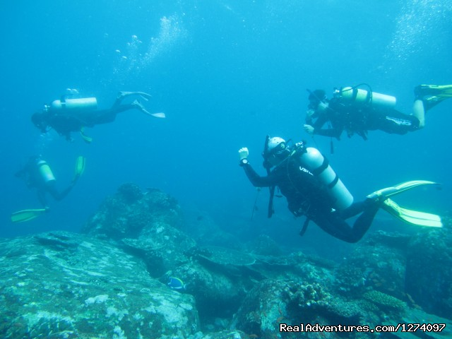 Pulau Weh Dive Packages: Dive group