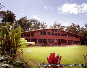 Relaxing North Shore getaway at the Utopium Estate Haleiwa, Hawaii Hotels & Resorts