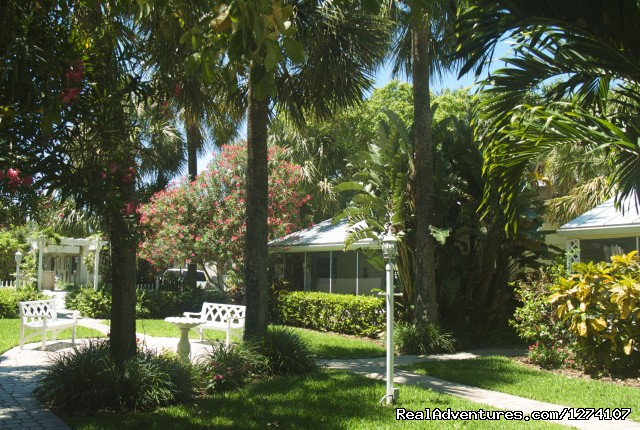 Cottage yard - Cottages by the Ocean - South Florida getaway