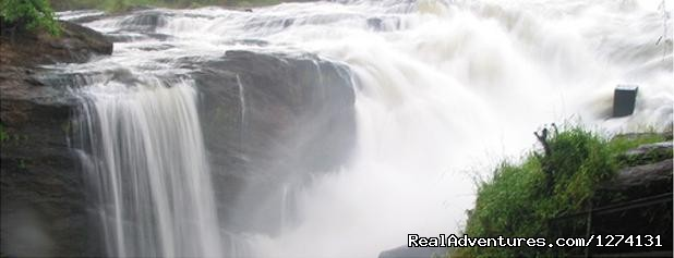 Murchison Falls National Park - Pearl of Africa Tours and Travel