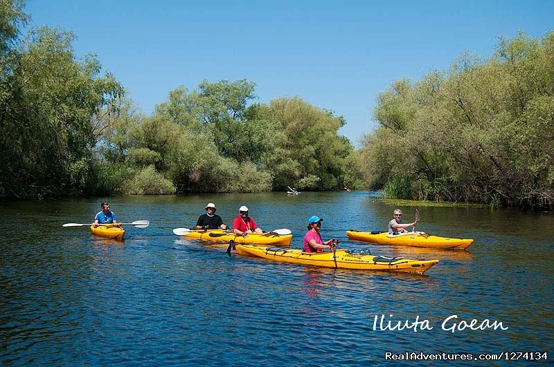 Image #3/25 | 4 day Kayaking in Danube Delta Confort 2013