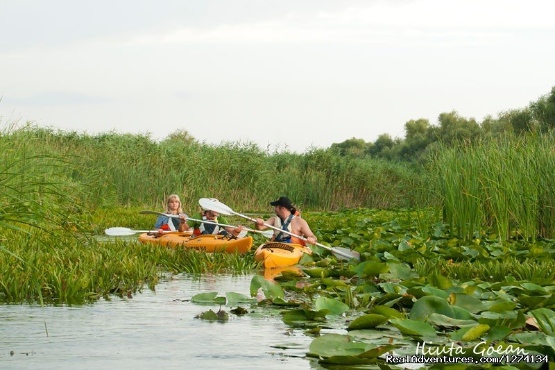 Image #4/25 | 4 day Kayaking in Danube Delta Confort 2013