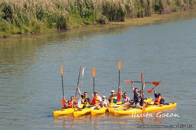 Image #6/25 | 4 day Kayaking in Danube Delta Confort 2013