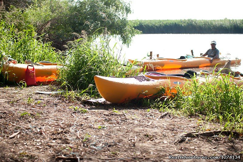Image #8/25 | 4 day Kayaking in Danube Delta Confort 2013