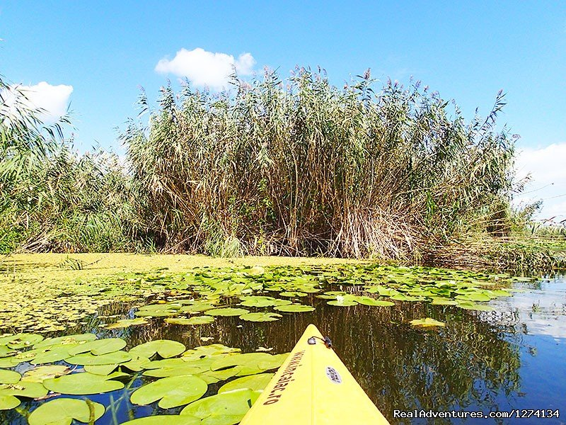 Image #9/25 | 4 day Kayaking in Danube Delta Confort 2013