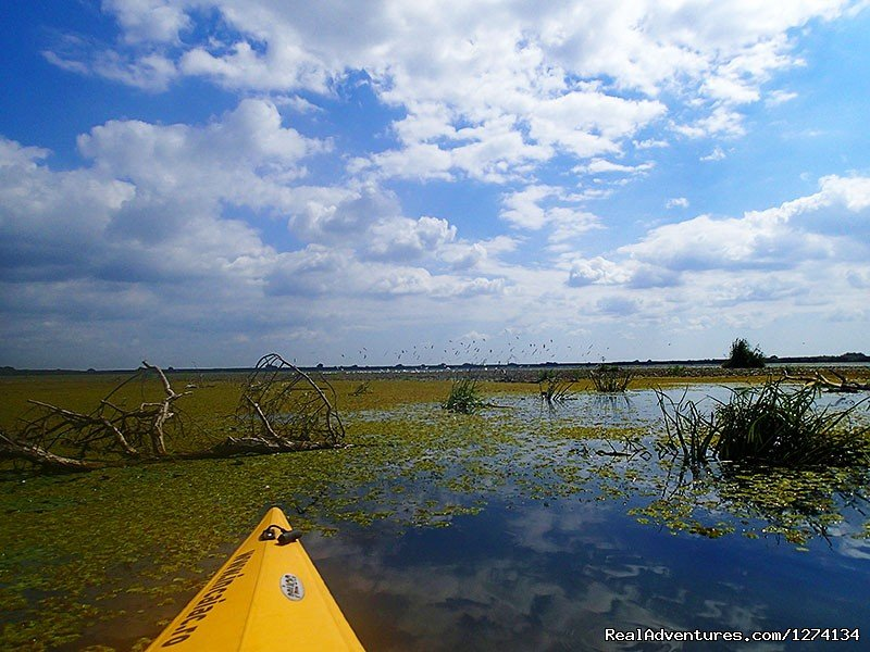 Image #12/25 | 4 day Kayaking in Danube Delta Confort 2013