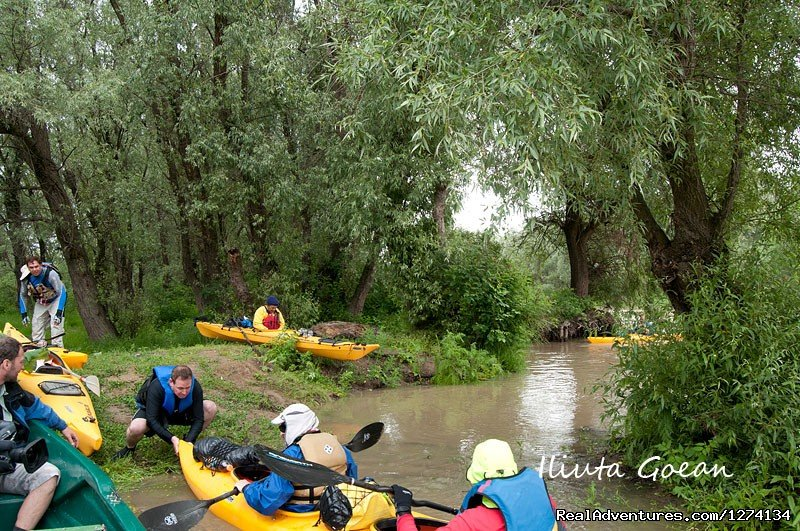Image #13/25 | 4 day Kayaking in Danube Delta Confort 2013