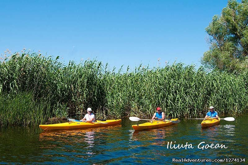Image #14/25 | 4 day Kayaking in Danube Delta Confort 2013