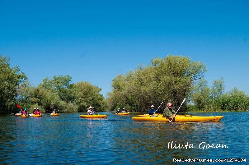 Image #15/25 | 4 day Kayaking in Danube Delta Confort 2013