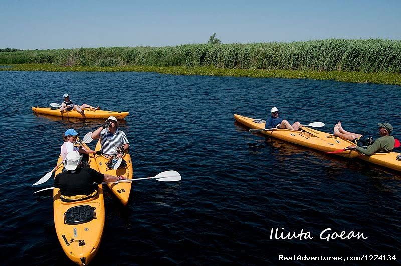 Image #16/25 | 4 day Kayaking in Danube Delta Confort 2013