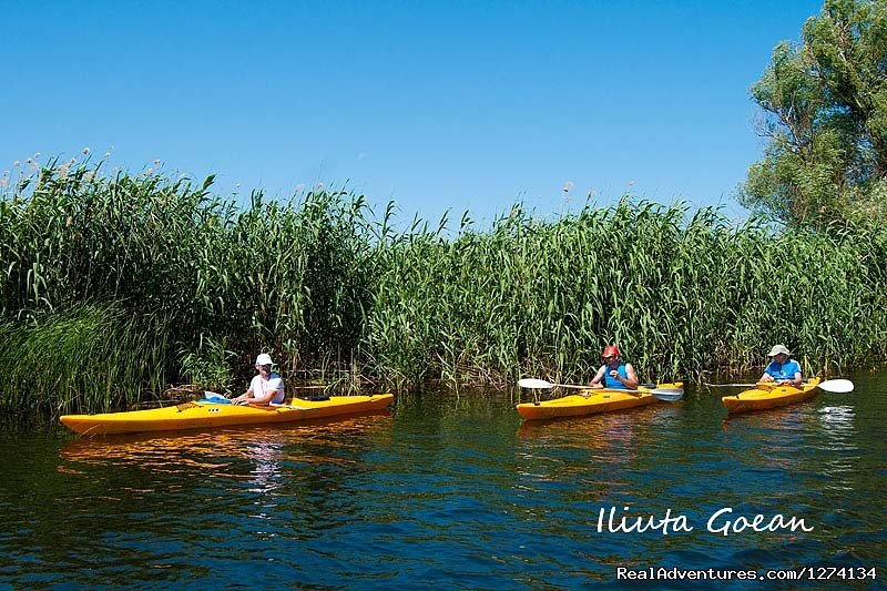 Image #19/25 | 4 day Kayaking in Danube Delta Confort 2013