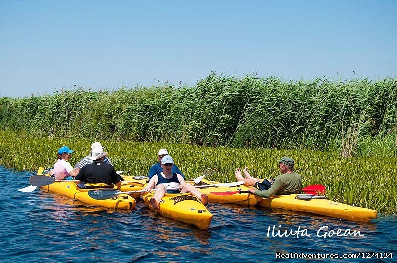Image #21/25 | 4 day Kayaking in Danube Delta Confort 2013