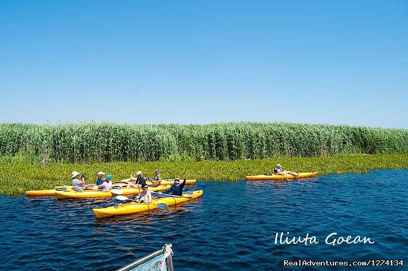 Image #22/25 | 4 day Kayaking in Danube Delta Confort 2013