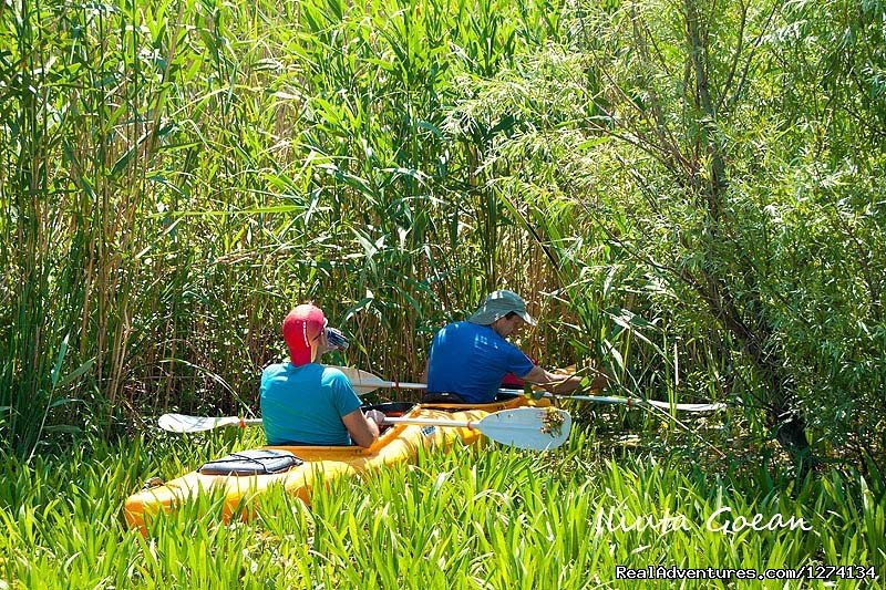 Image #25/25 | 4 day Kayaking in Danube Delta Confort 2013
