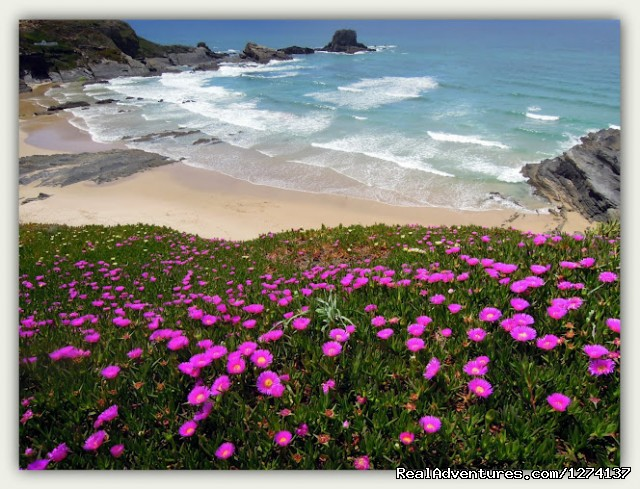 Desert Beaches - Alentejo & Vicentina Coast Self-guided Walking