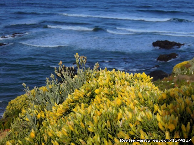 Perfect Place To Relax - Alentejo & Vicentina Coast Self-guided Walking