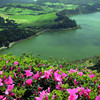 Azores Shore Excursions and Sport Fishing
