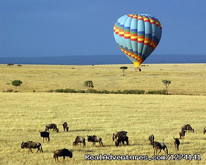 Balloon Safari - Inspiring your spirit of adventure