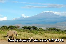 Mt.Kilimanjaro - Inspiring your spirit of adventure