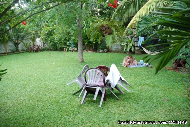 Mihin Villa Bentota. Backyard - lush green garden