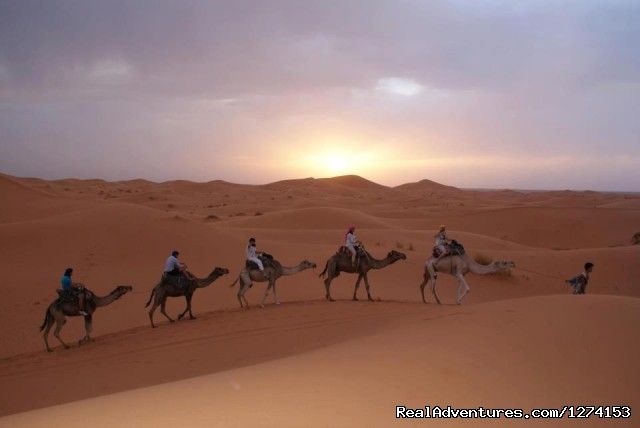 Camel Trekking (#6 of 9) - Morocco Safaris