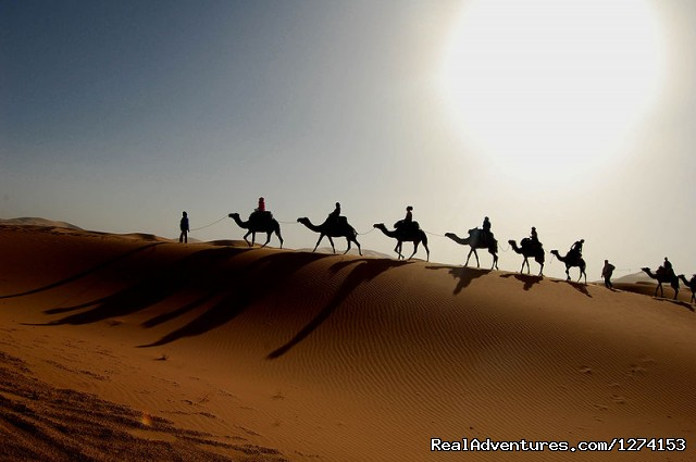 Morocco Safaris