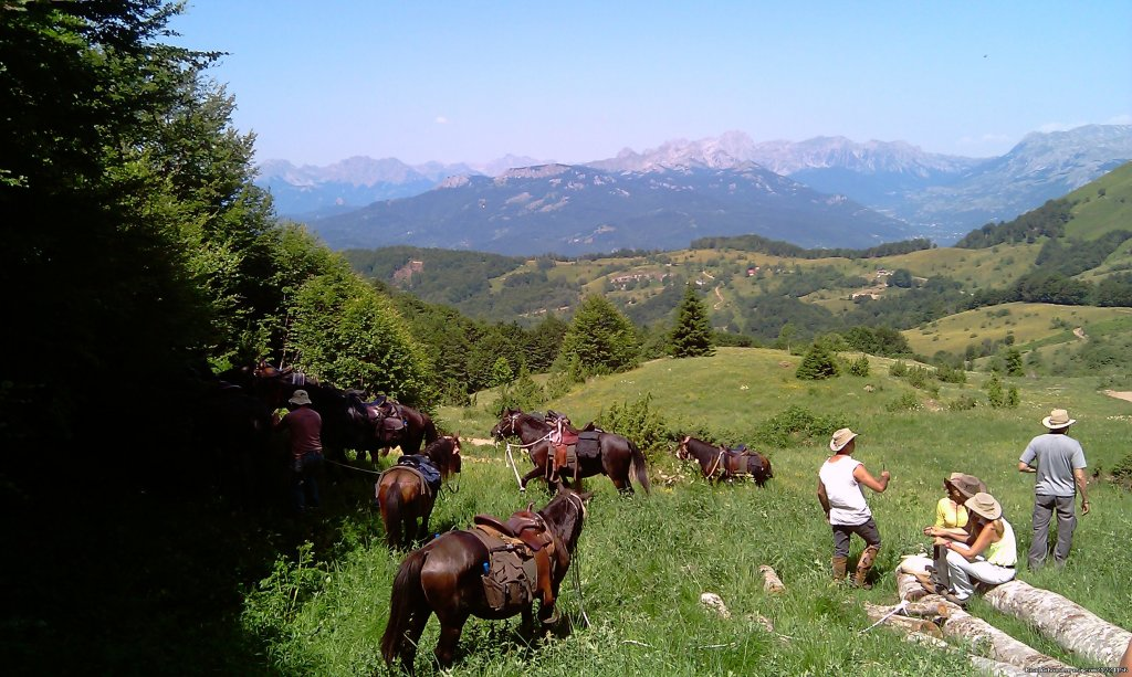 Relax and enjoy | Image #11/14 | Horse riding at only ecological country,Montenegro