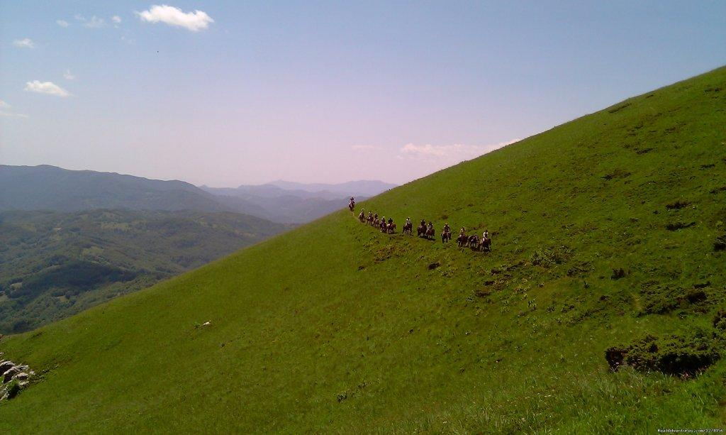 Image #13/14 | Horse riding at only ecological country,Montenegro