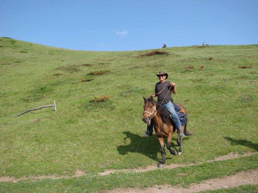 Image #14/14 | Horse riding at only ecological country,Montenegro
