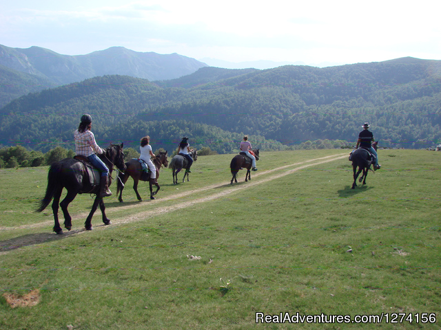 Horse riding at only ecological country,Montenegro National Park Biogradska Gora area